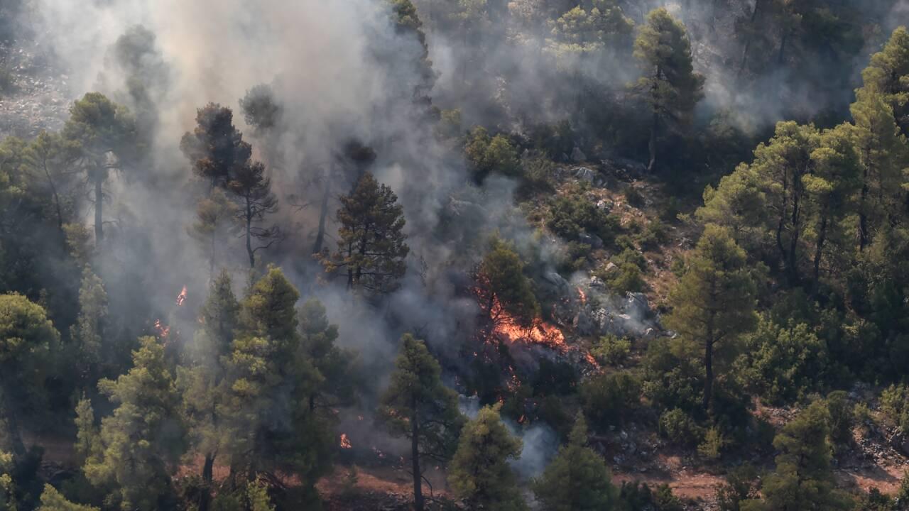 Grèce: des progrès contre l'incendie qui ravage l'île d'Eubée