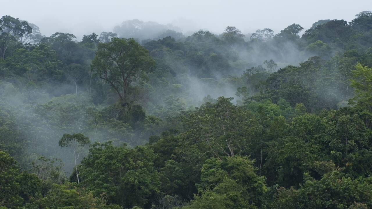 Quelles sont les zones du monde qui doivent agir en priorité pour limiter le réchauffement climatique ?