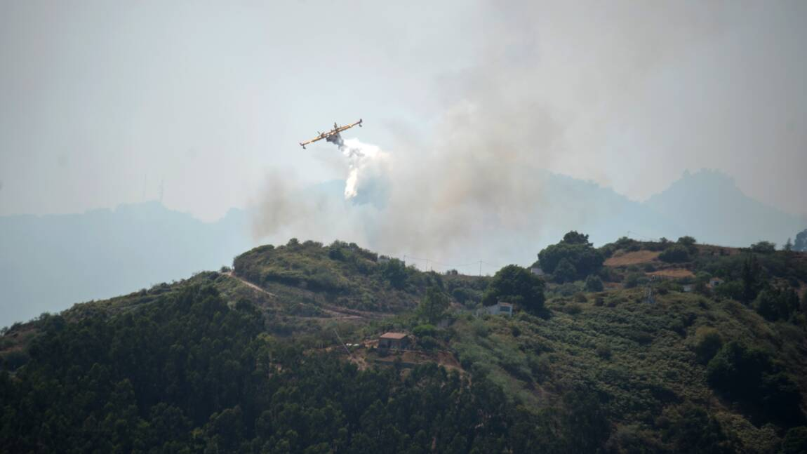 Grande Canarie: la progression de l'incendie ralentit, selon les autorités