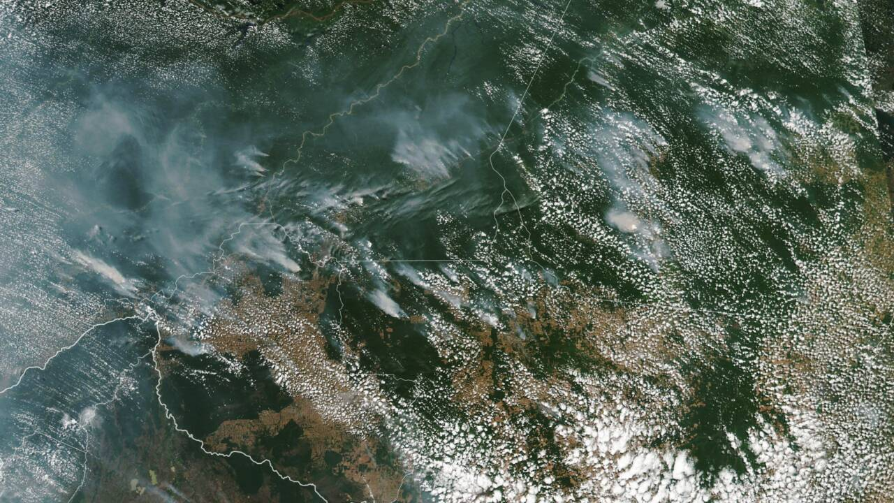 Amazonie : entre sécheresse et déforestation, les incendies ont grimpé de 83% au Brésil