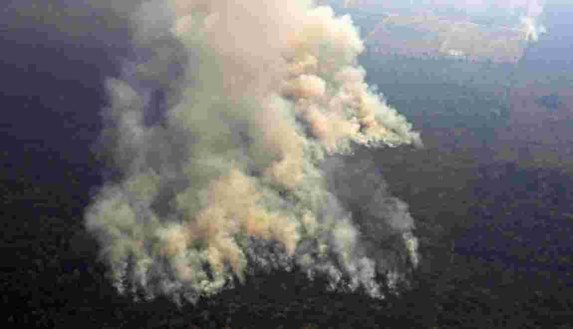 Incendies en Amazonie: Bolsonaro, sous pression, autorise l'envoi de l'armée