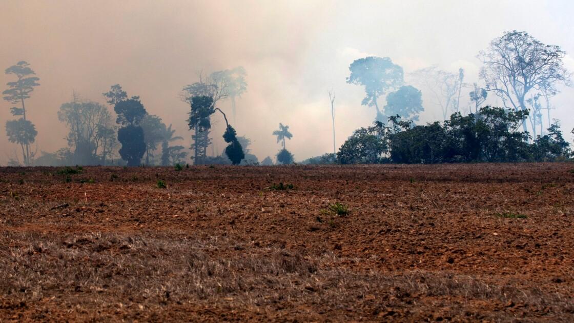 """Amazonie: des élus de Guyane française veulent """"un fonds international"""""""
