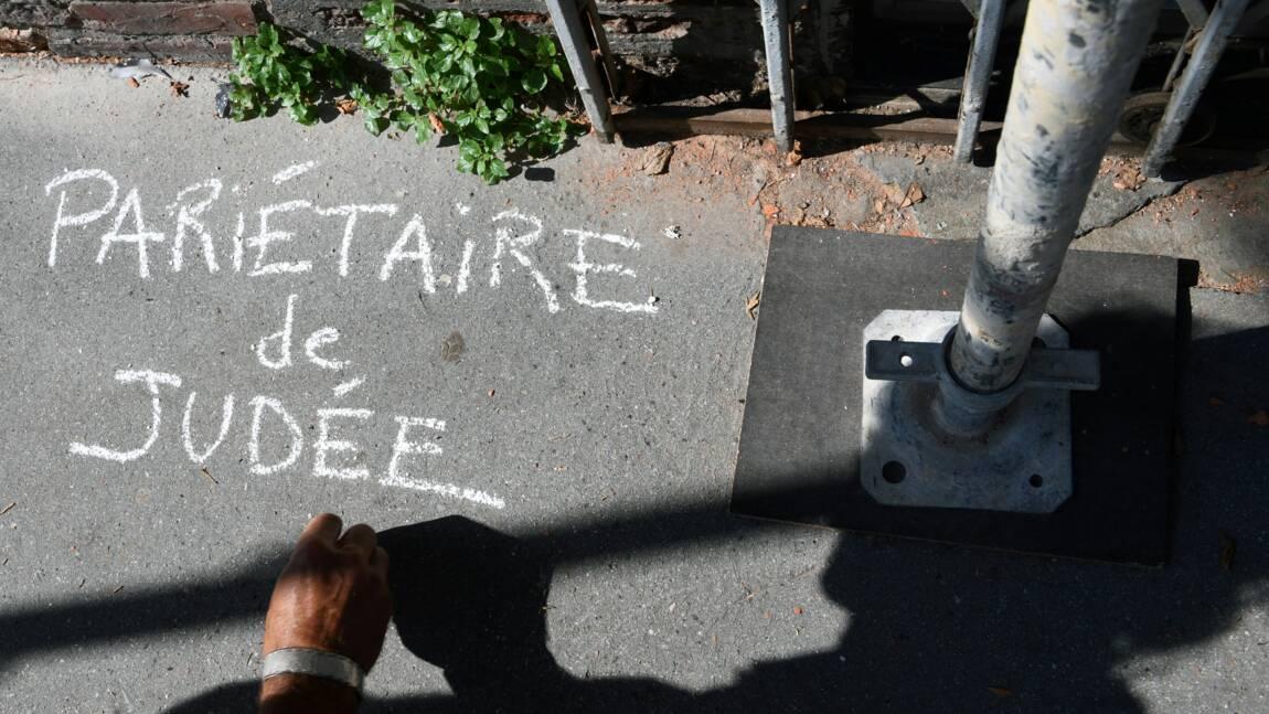 """Opération graffiti à Toulouse pour """"laisser pousser"""" les plantes sauvages"""