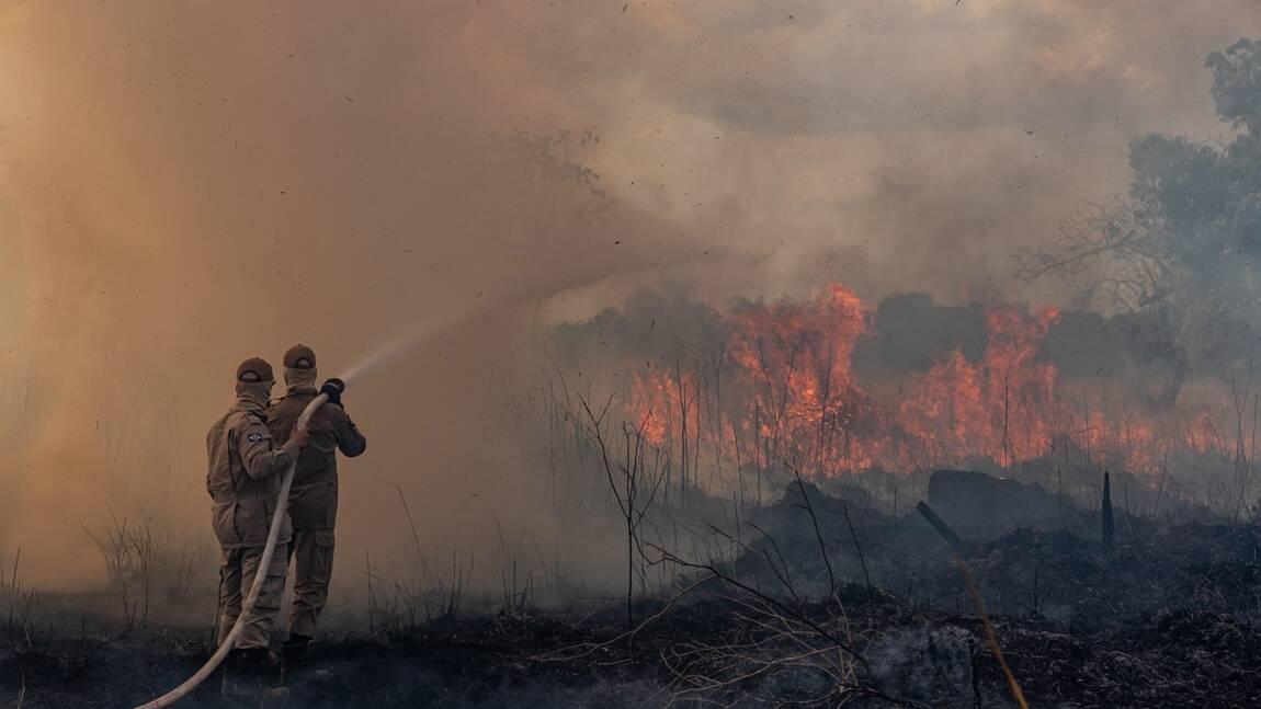 Amazonie: Bolsonaro minimise la gravité des incendies et s'en prend à la presse