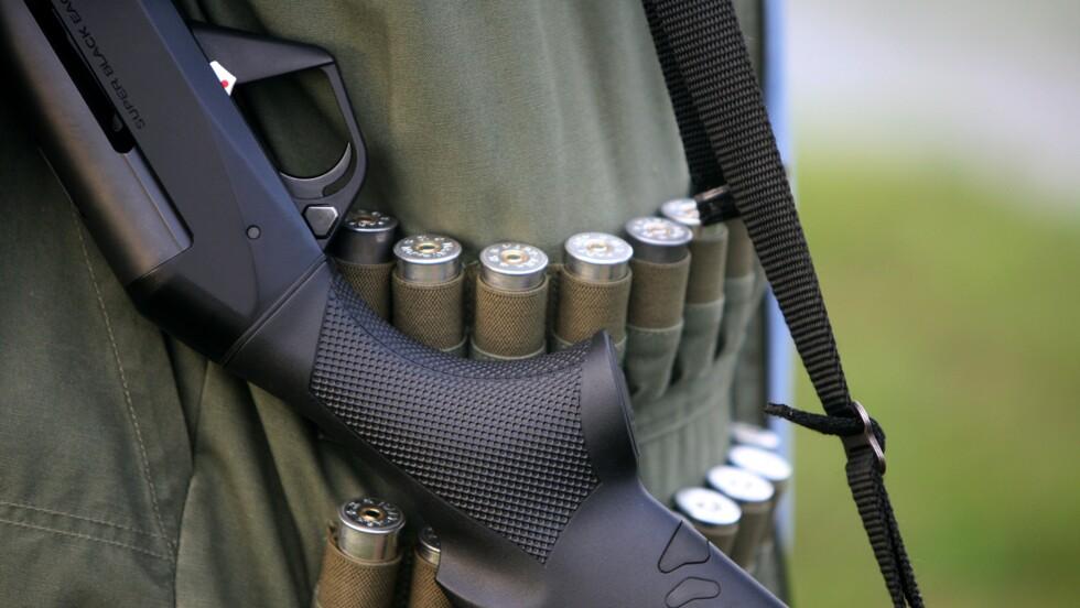 Le gouvernement fixe un quota de chasse pour la tourterelle des bois