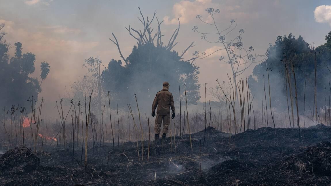 Au Brésil, pas de répit sur le front des incendies