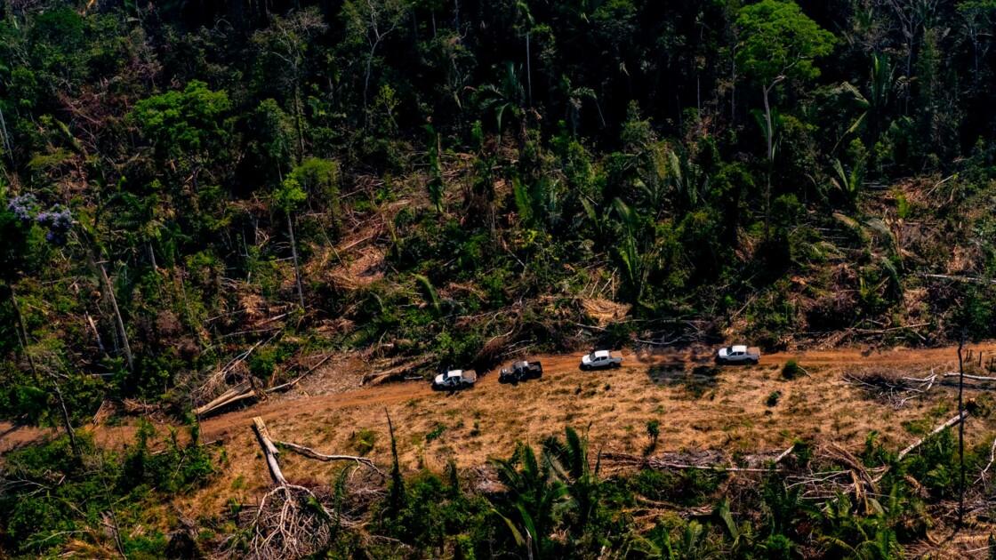 """Le sommet sur l'Amazonie lancera un """"appel mondial"""" pour sa protection"""