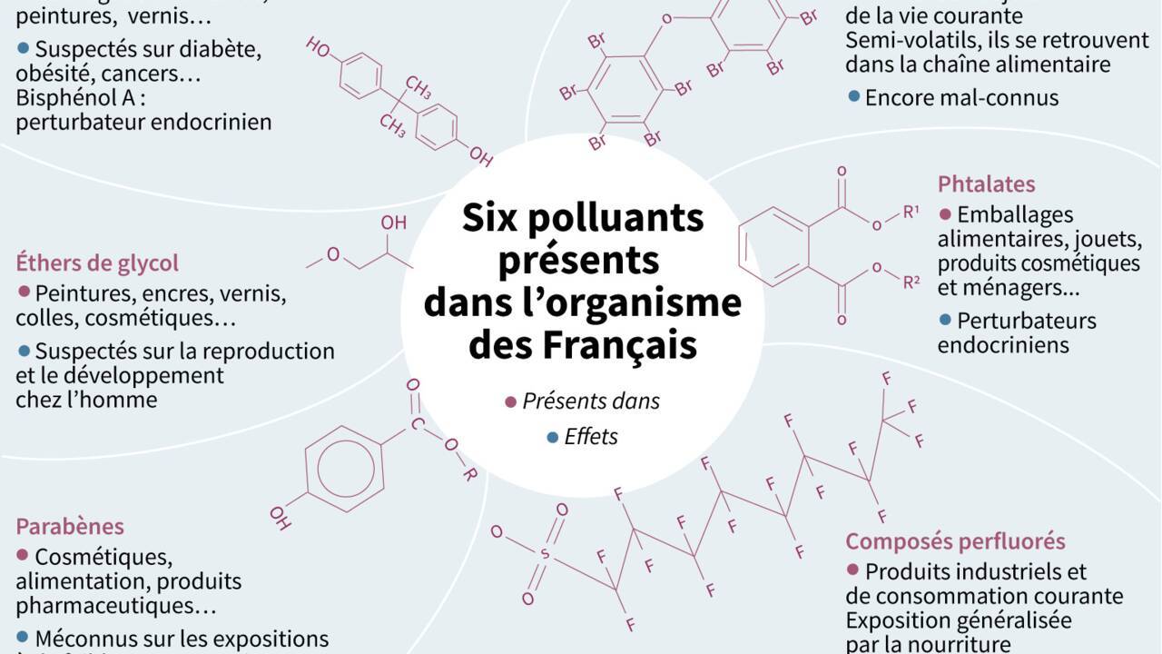 Bisphénols, phtalates, parabènes... Six polluants présents dans l'organisme de tous les Français
