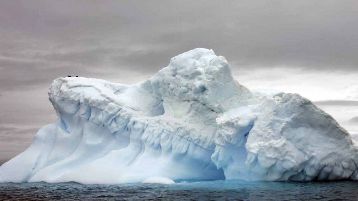"""Antarctique: expédition """"écologique et éducative"""" pour évaluer la pollution"""