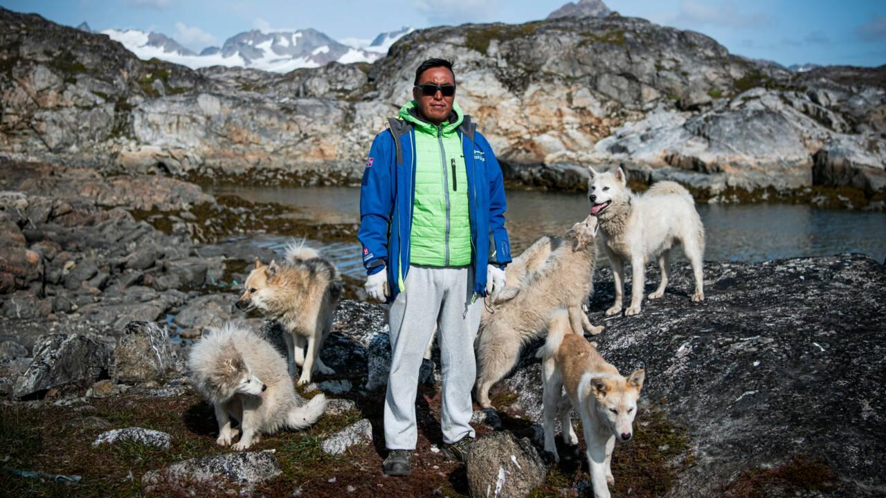 Au Groenland, les chiens de traîneau menacés par la fonte des glaces