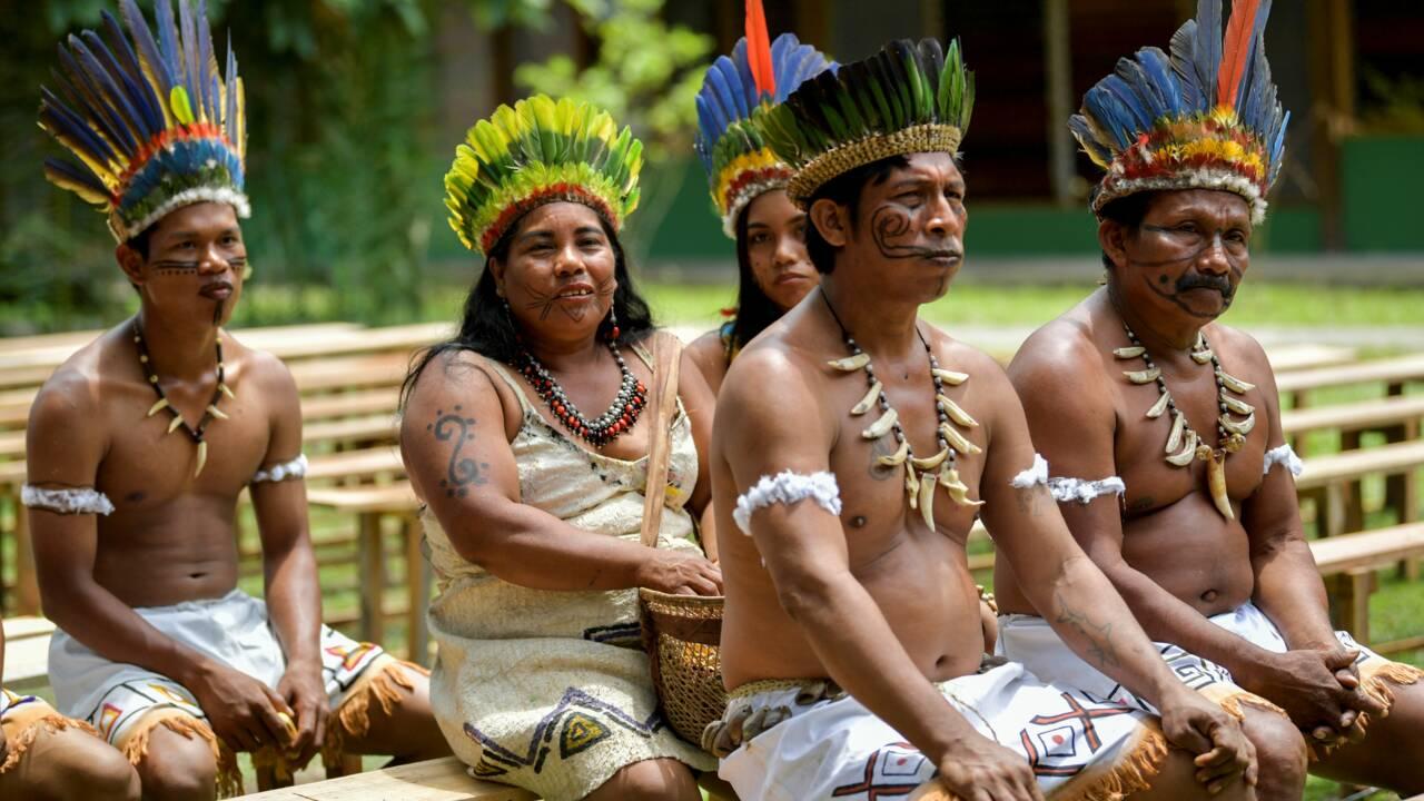 """Sept pays s'engagent à protéger l'Amazonie, en dépit des """"piques"""" du Brésil"""