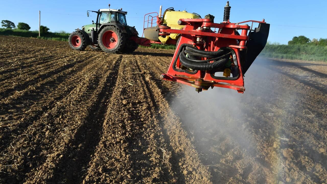 Riverains et pesticides: une distance minimale de 5 à 10 mètres