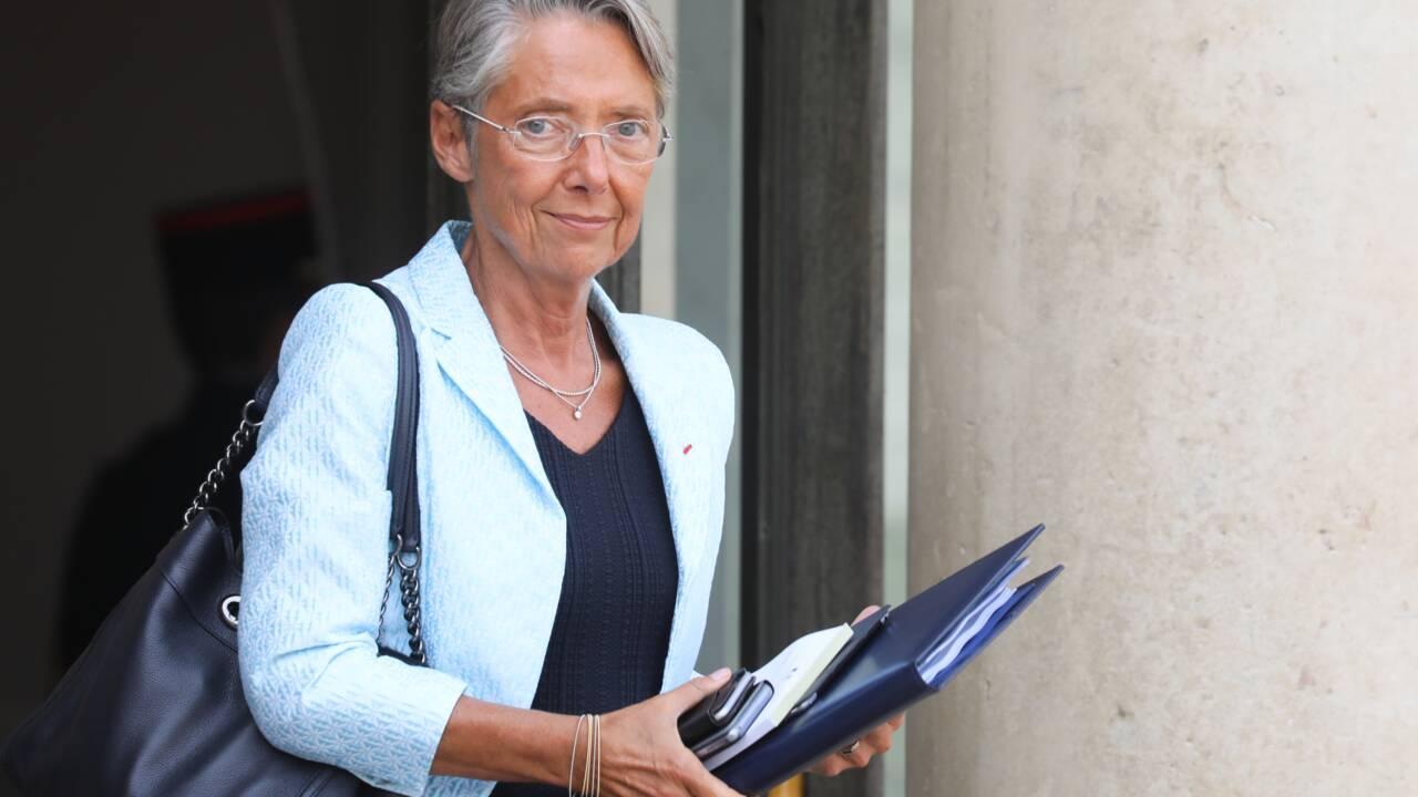 """Pesticides: """"On suit strictement des avis scientifiques"""", affirme Elisabeth Borne"""