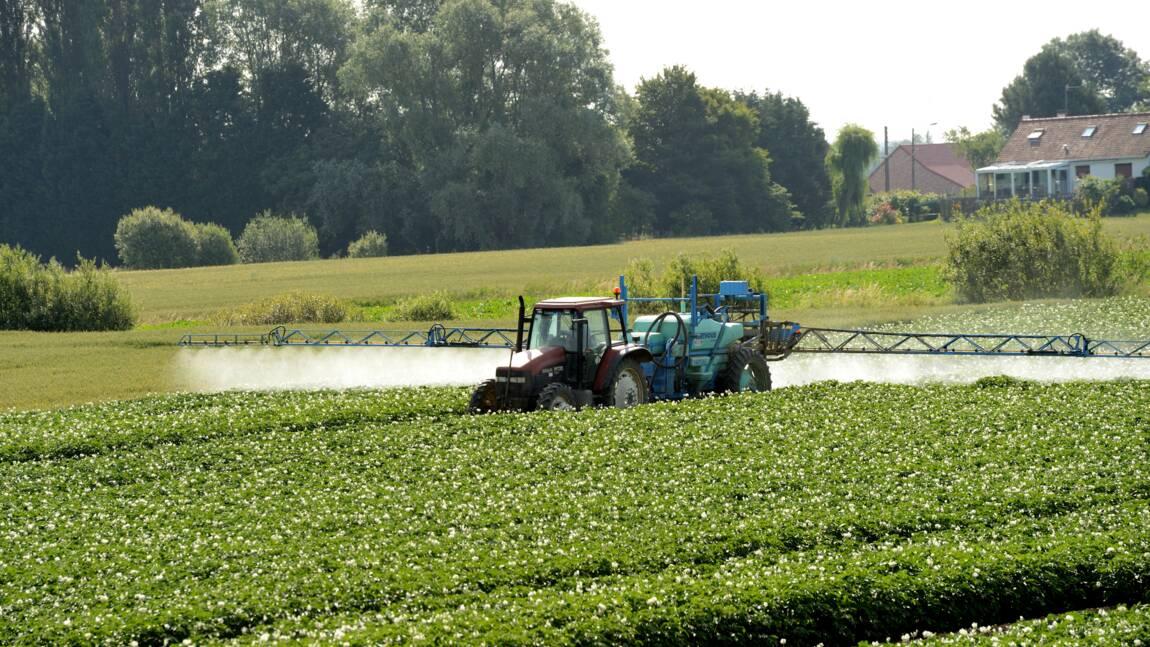 """Pesticides: Agir pour l'Environnement demande un """"plan Marshall"""" de l'agriculture"""