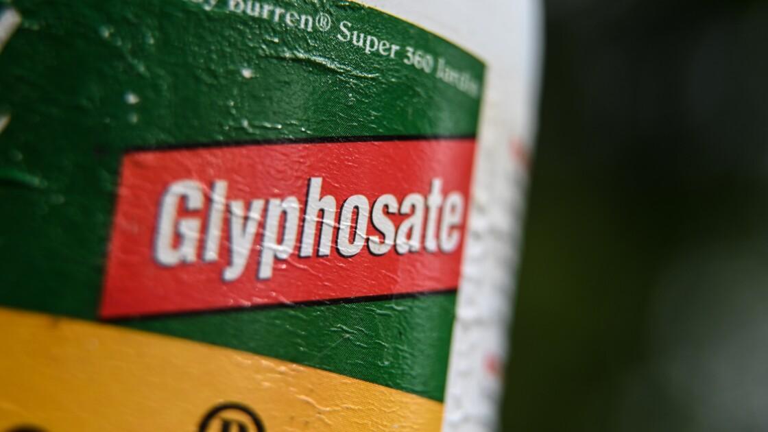 L'agriculture de conservation des sols pourra continuer à utiliser du glyphosate, selon Didier Guillaume