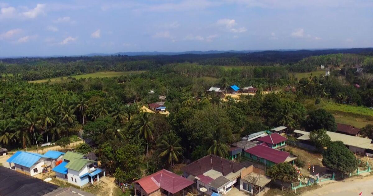 Sepaku, la possible future capitale indonésienne sur l'île de Bornéo