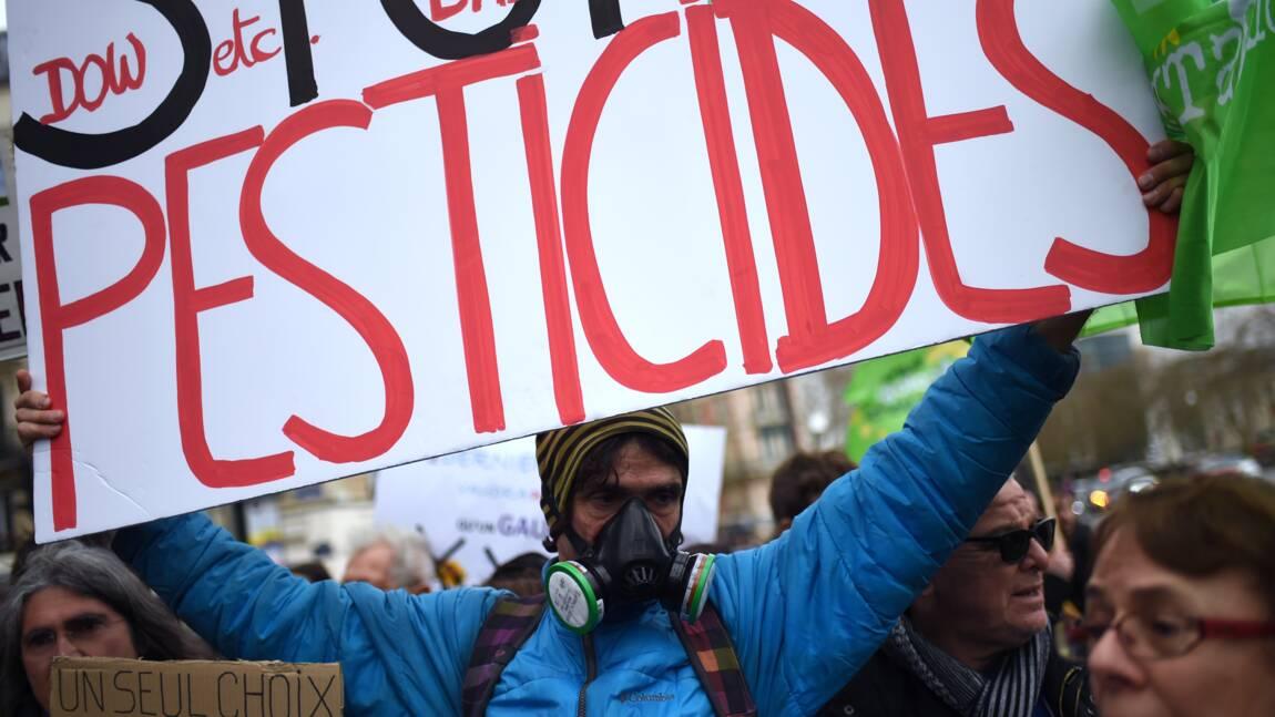 La Seine-Saint-Denis prend à son tour un arrêté interdisant l'usage de pesticides