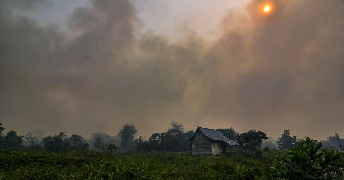 Incendies: nombreuses écoles et des aéroports fermés en Malaisie et Indonésie
