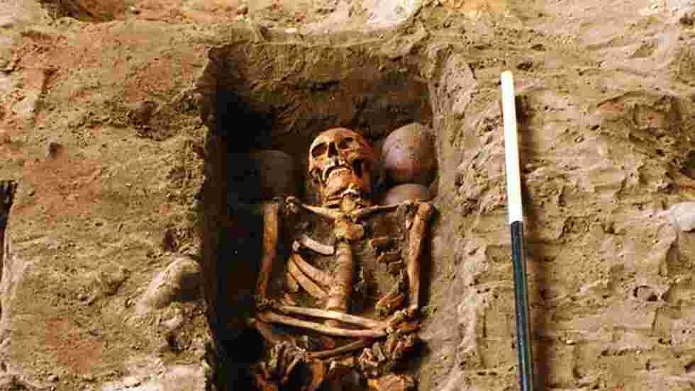 """En Ecosse, des archéologues éclairent le mystère de la """"tombe aux six crânes"""""""