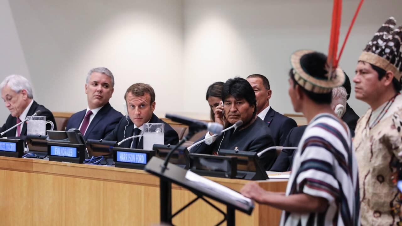 A l'ONU, 500 millions de dollars pour les forêts, en l'absence du Brésil