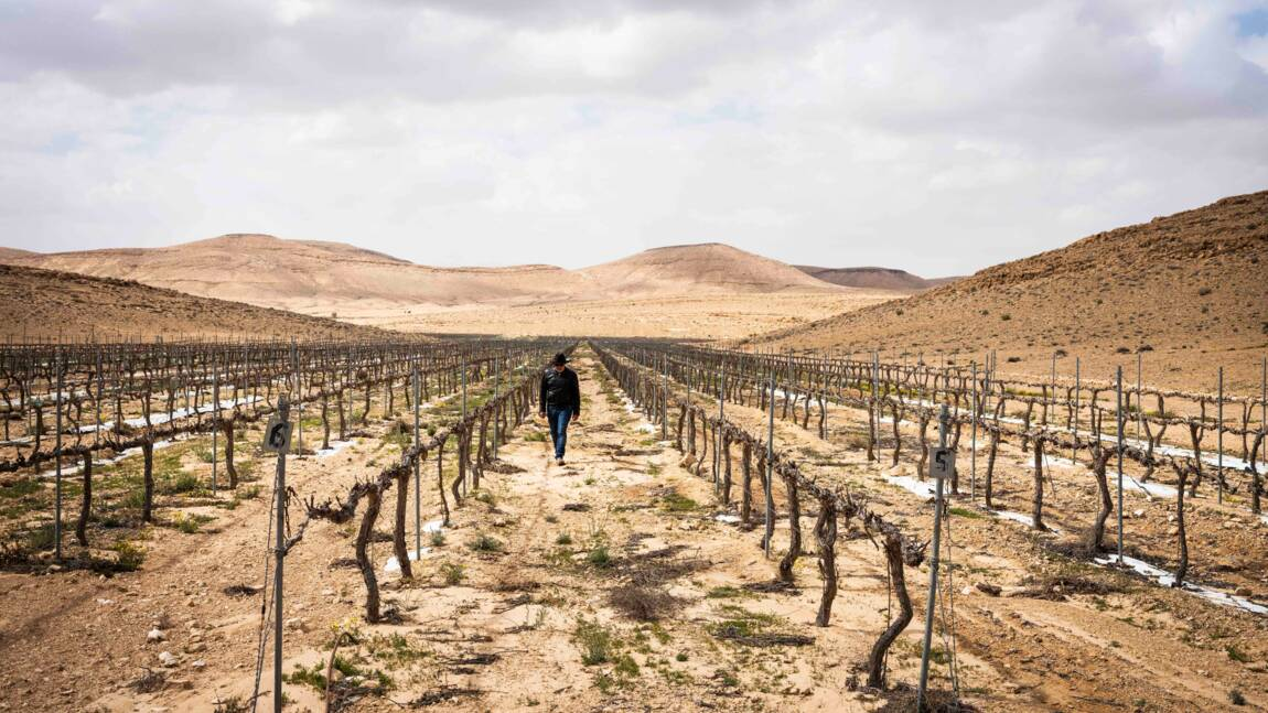 Comment Israël a transformé le désert du Néguev en immense laboratoire high-tech