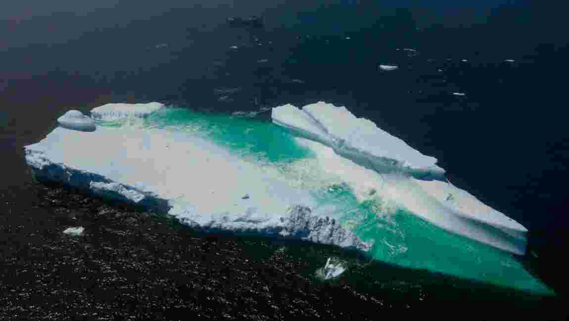 Les océans ravagés, nouvelle preuve accablante du dérèglement climatique