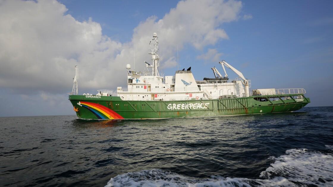 """Dans les eaux guyanaises, la découverte d'un écosystème """"unique au monde"""""""