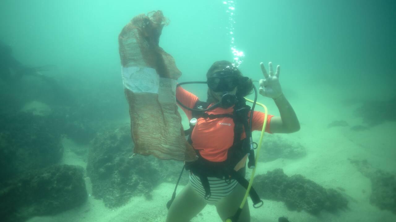Avec les plongeurs de l'Océanium, à la traque du plastique au fond de l'Atlantique