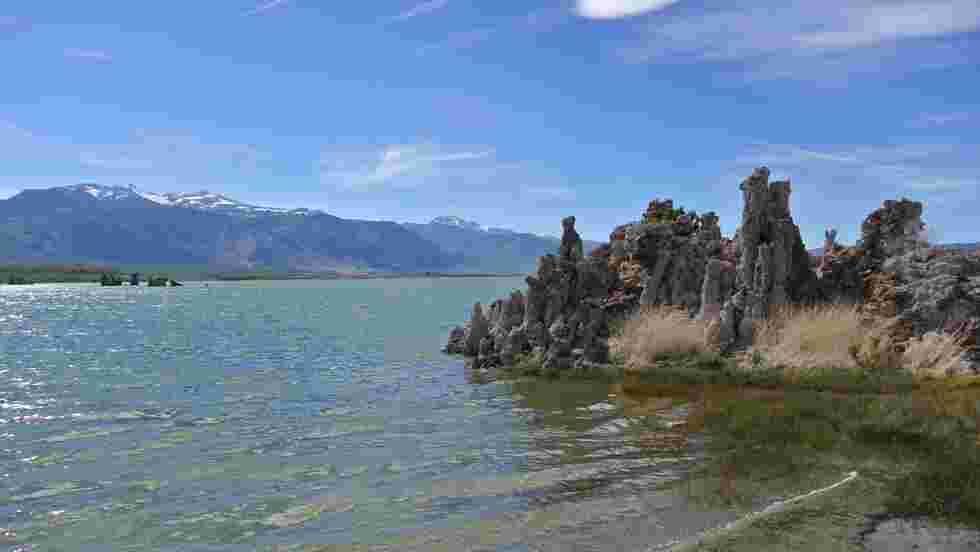 En Californie, un lac salé révèle des vers dotés de trois sexes et résistants à l'arsenic