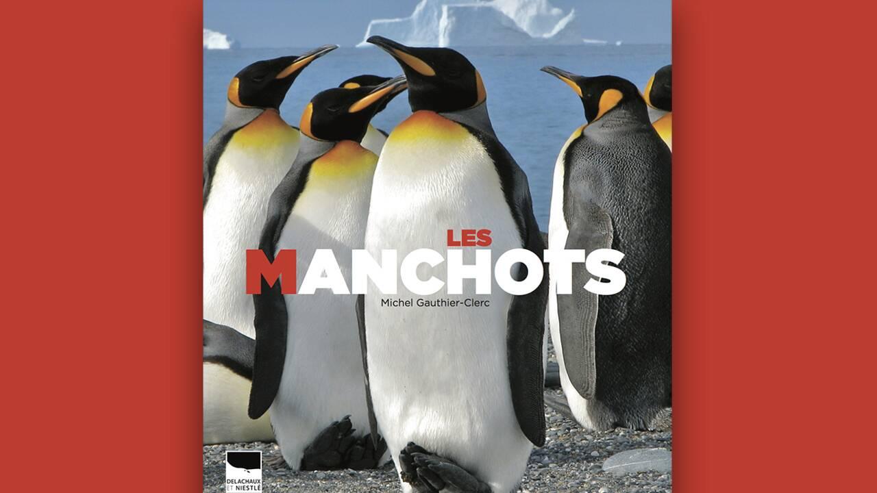 Quelle est la différence entre un manchot et un pingouin ?