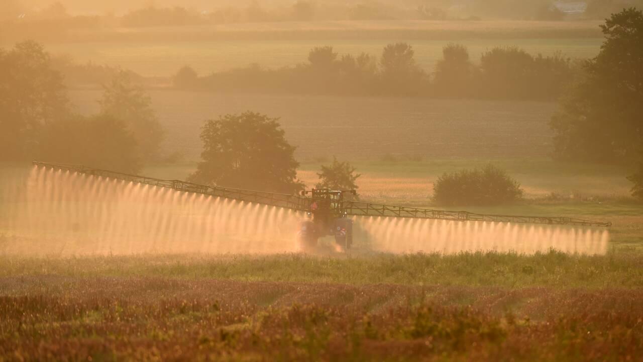 La vente de produits phytosanitaires en forte hausse en 2018 en France