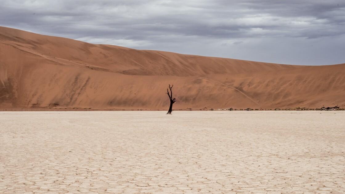 Les pays émergents, leaders de la lutte contre le réchauffement climatique ?