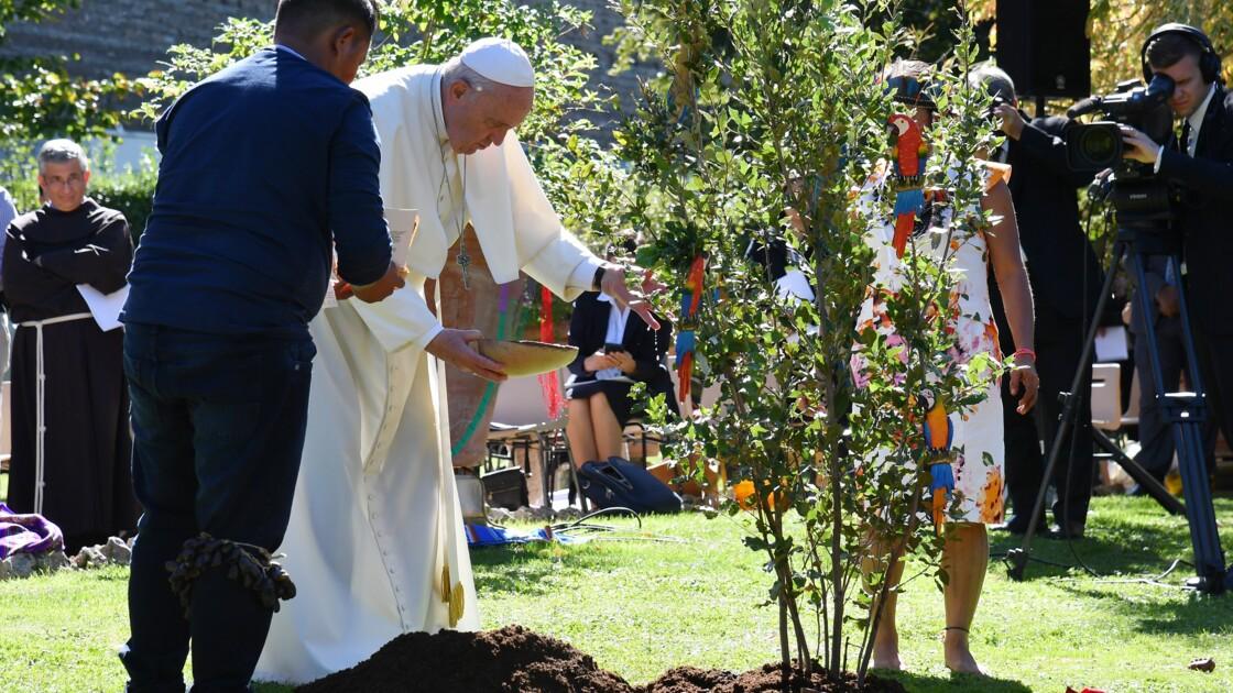 Le pape plante un arbre au Vatican avec des indigènes d'Amazonie