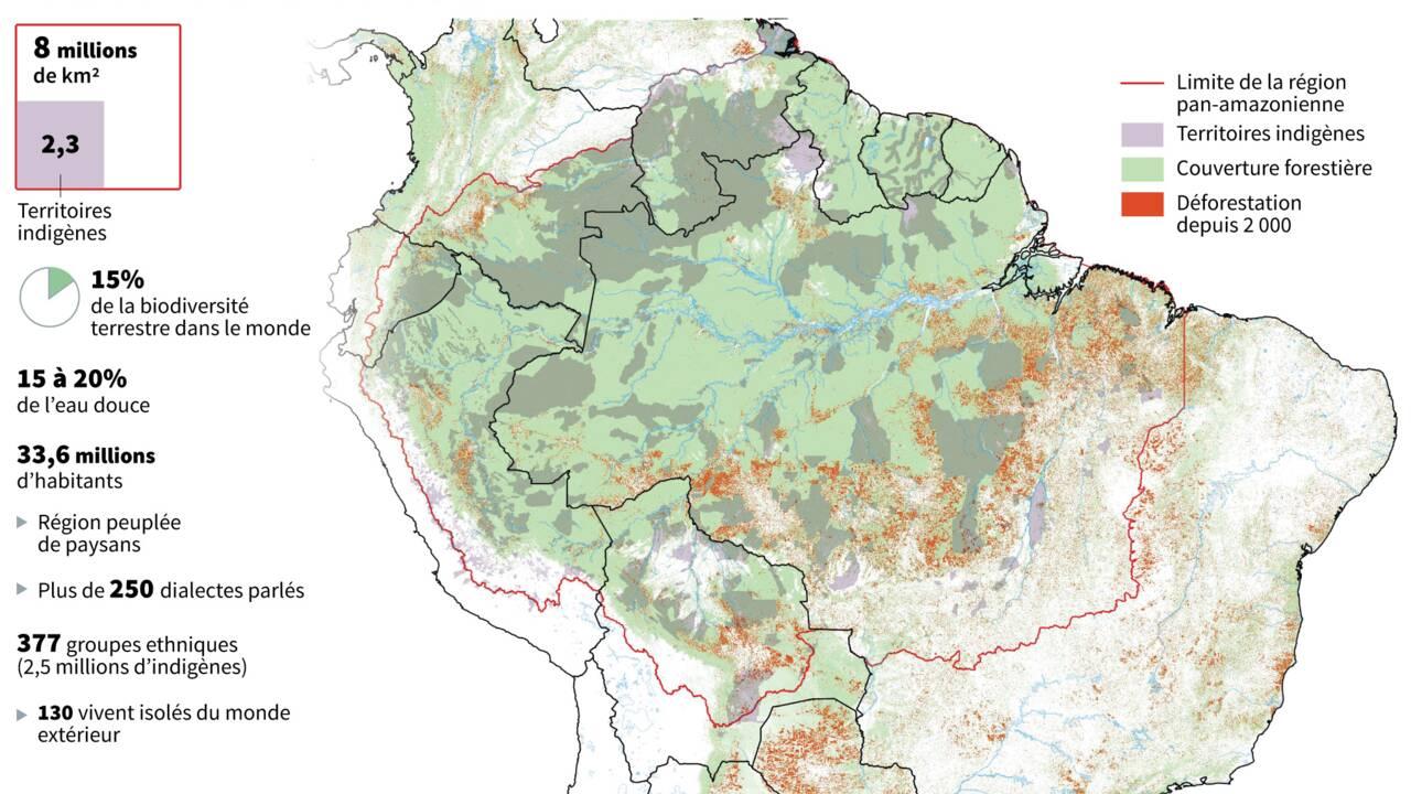 """Incendies en Amazonie: le pape dénonce des """"intérêts destructeurs"""""""