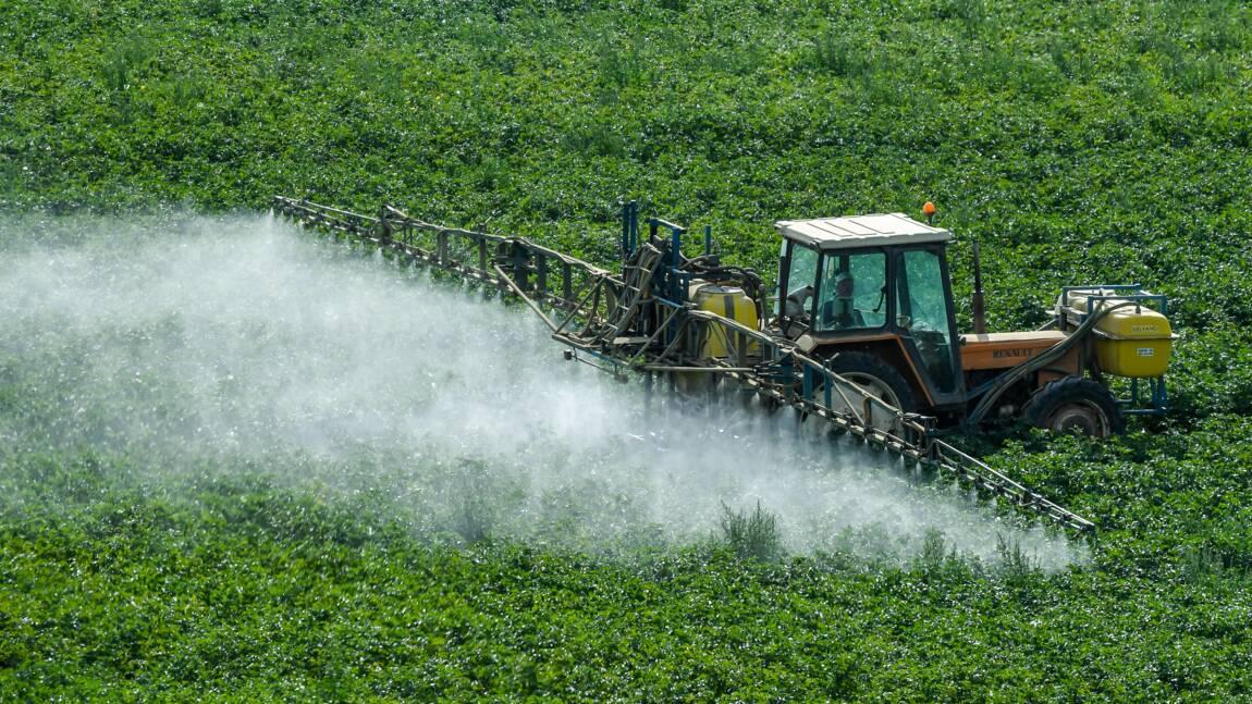 Un maire de l'Yonne prend un arrêté pro-pesticides