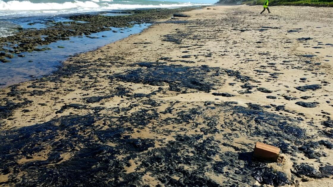 """Pollution de plages au Brésil: un désastre """"d'une ampleur inédite"""""""