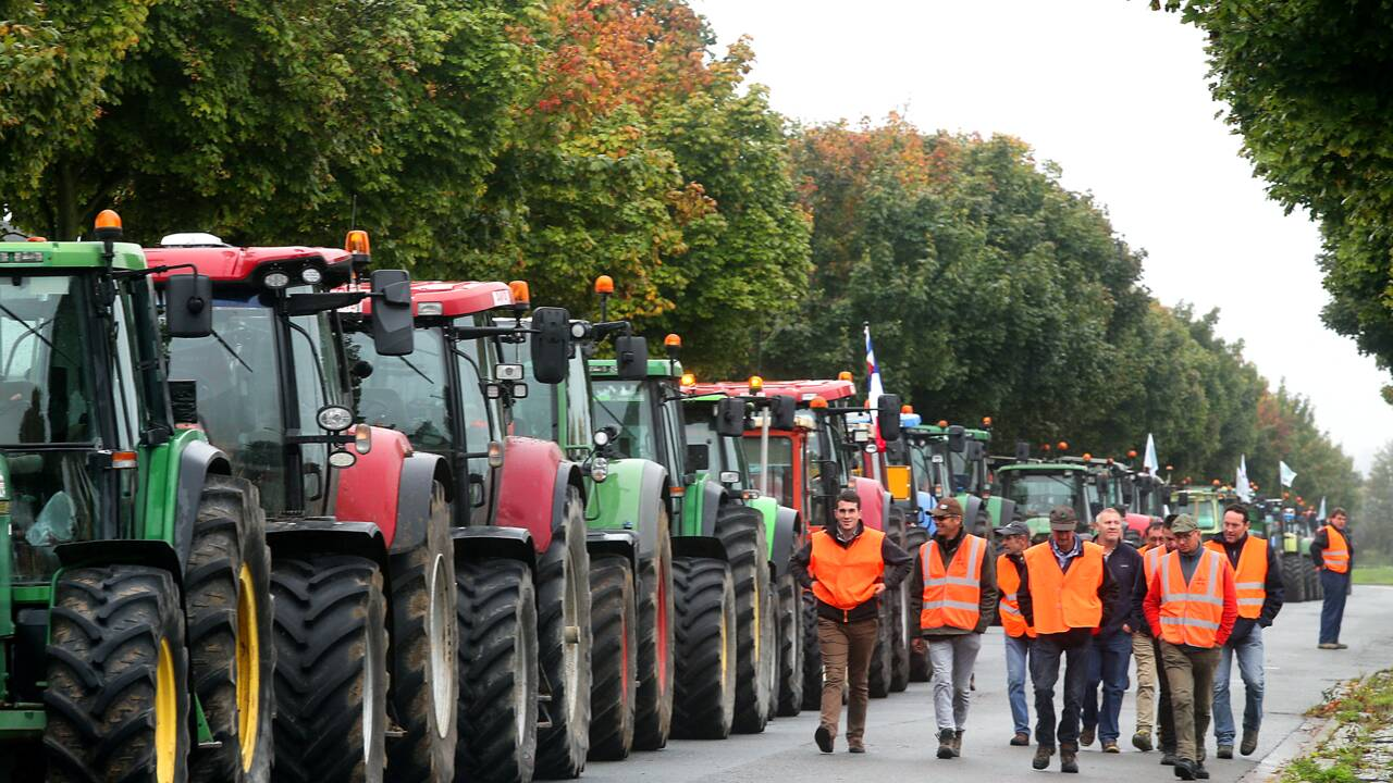 Les agriculteurs manifestent leur détresse sur les routes de France