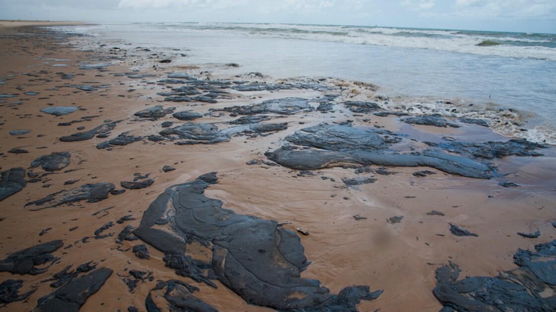 Pollution au pétrole au Brésil: le Venezuela nie être responsable