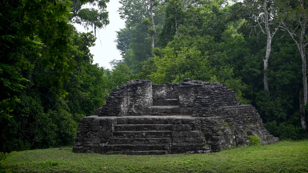 Au Guatemala, premiers succès dans la préservation d'une réserve de biosphère