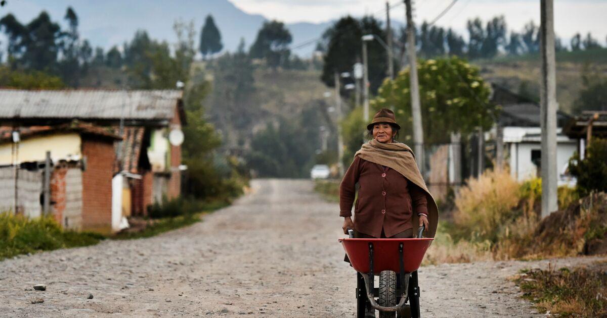En Equateur, les indigènes regagnent leurs champs après avoir lutté en ville