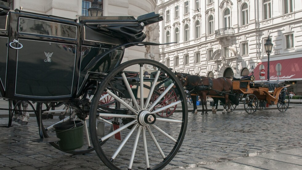 Huit mots à connaître avant de partir à Vienne