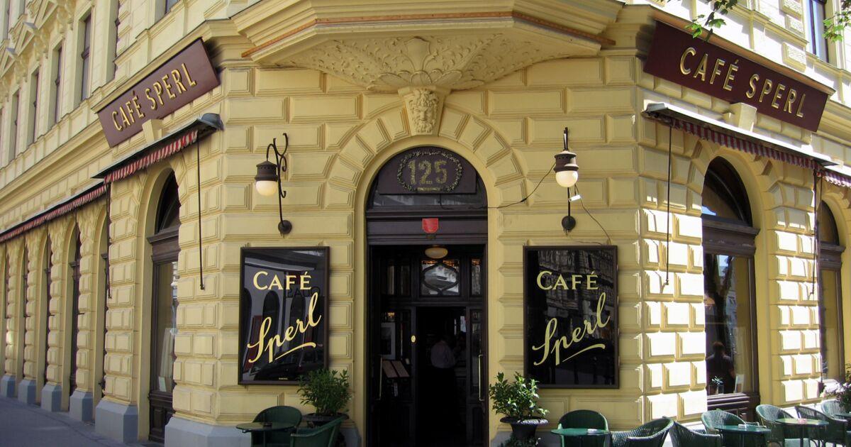 Les meilleurs cafés de Vienne : les conseils de nos reporters