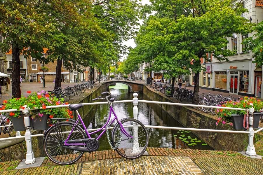 Fleurs et vélo aux Pays-Bas