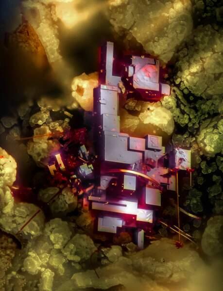 13. Cette espèce minérale composée d'oxyde cuivreux est appelée cuprite. Elle a été grossie 20 fois.