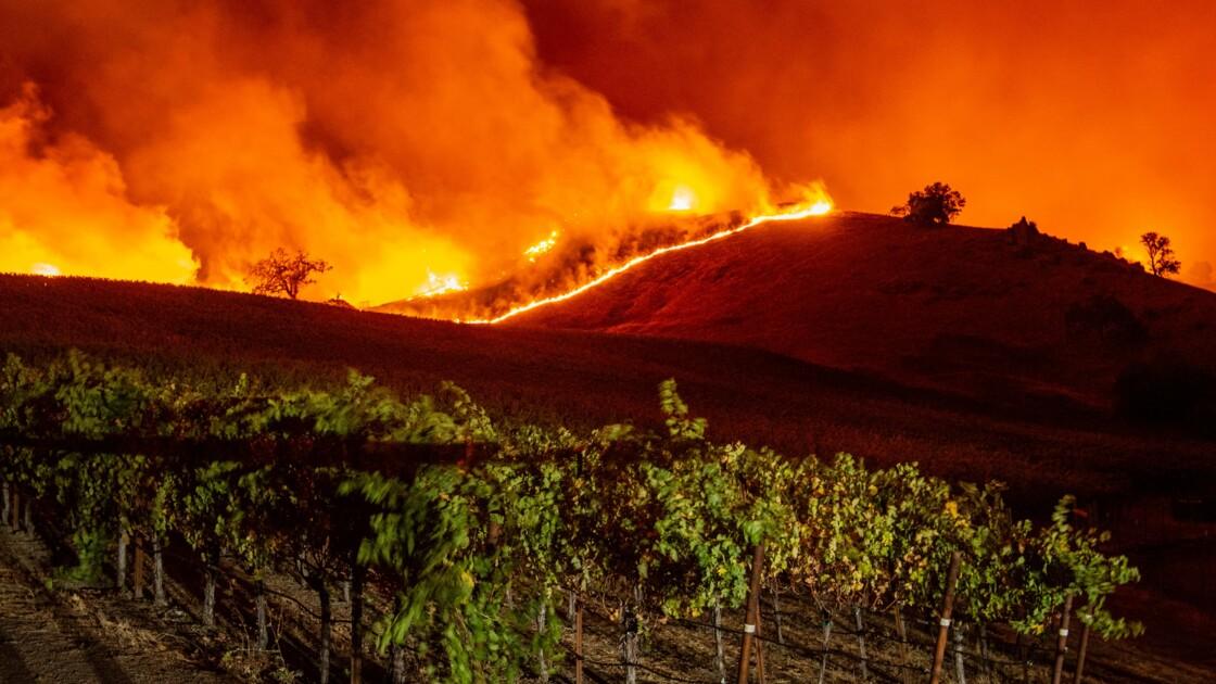 Un incendie se propage au milieu des vignobles californiens