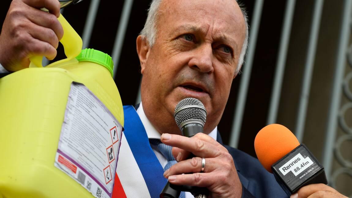 Municipales: le maire anti-pesticides de Langouët ne se représente pas