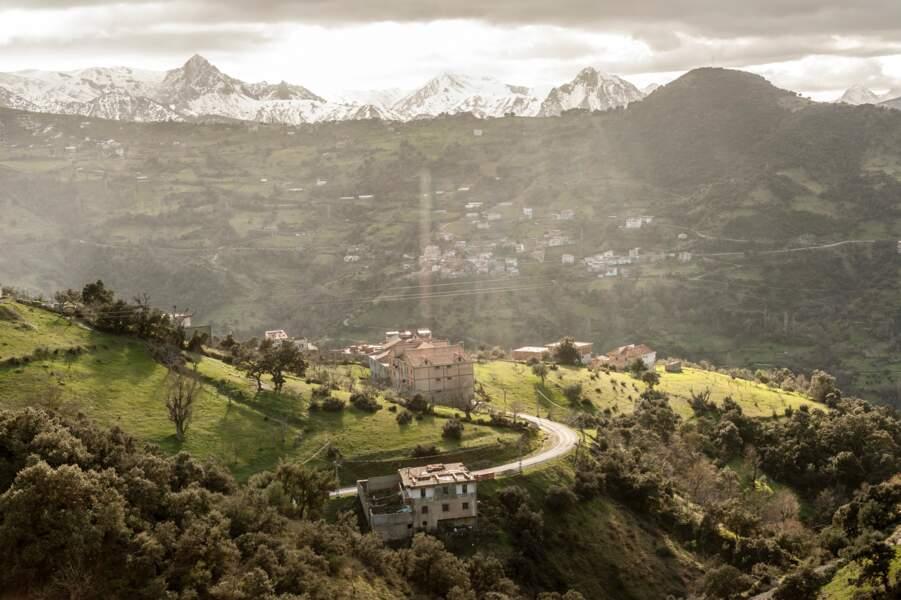 Verte Kabylie