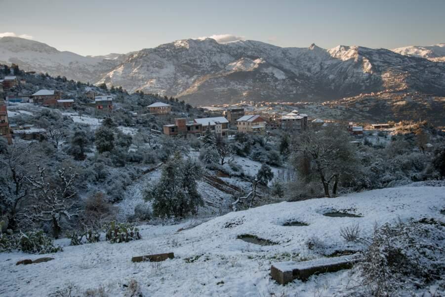 L'Algérie sous la neige