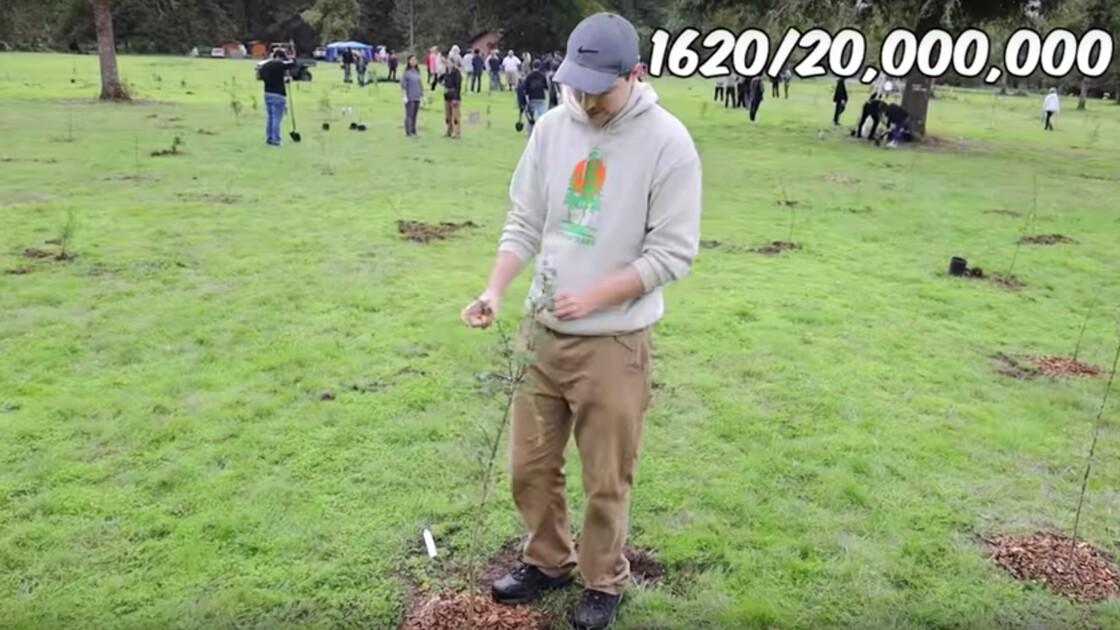 Un célèbre Youtubeur mobilise sa communauté pour la reforestation