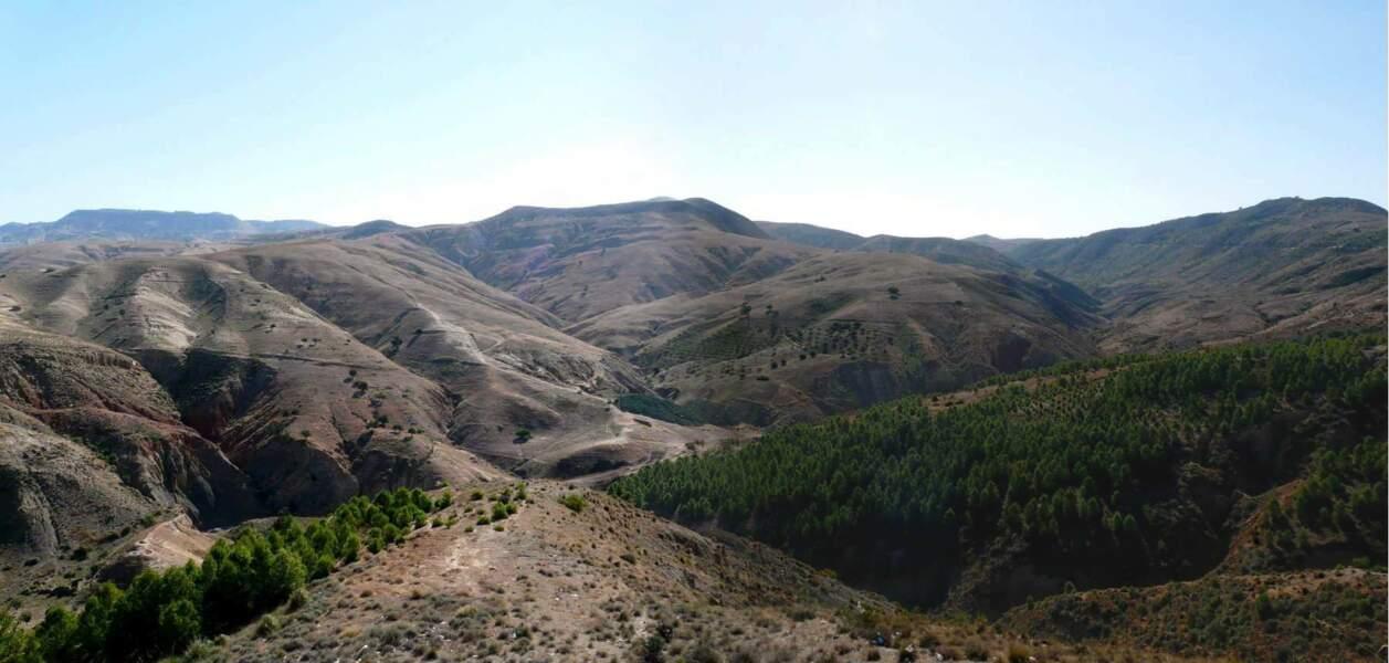 Sur la route de Mostaganem, nord-ouest de l'Algérie